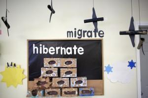 tlc_migrate